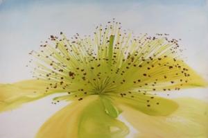 Açan Çiçek Yağlı Boya Sanat Kanvas Tablo