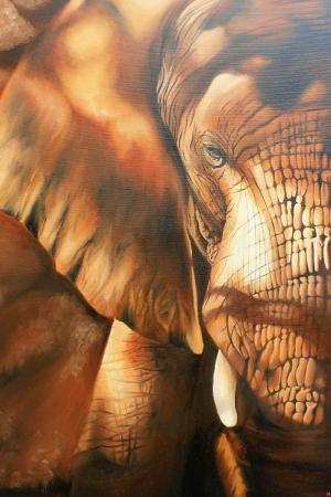 Afrika Fili Hayvanlar Kanvas Tablo