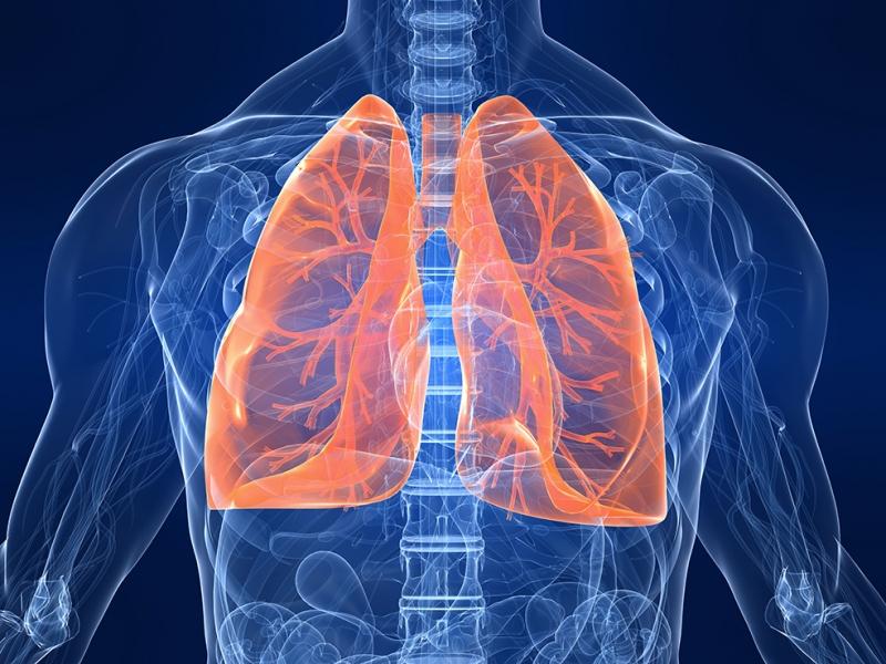 Akçiğerler Dijital ve Fantastik Kanvas Tablo