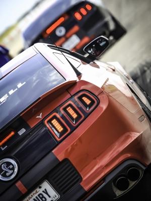 Araba Yarışı Araçlar Kanvas Tablo