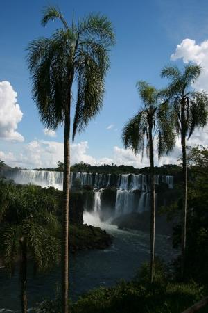 Arjantin Cataratas Del Iguazu Doğa Manzaraları Kanvas Tablo