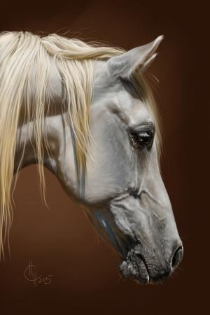 Atlar-15 Klasik Sanat Kanvas Tablo