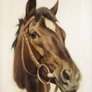 Atlar-36 Klasik Sanat Kanvas Tablo