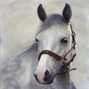 Atlar 4 Yağlı Boya Sanat Kanvas Tablo