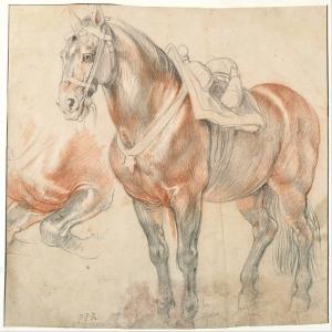 Atlar-44 Klasik Sanat Kanvas Tablo