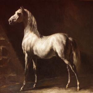 Atlar-5 Klasik Sanat Kanvas Tablo