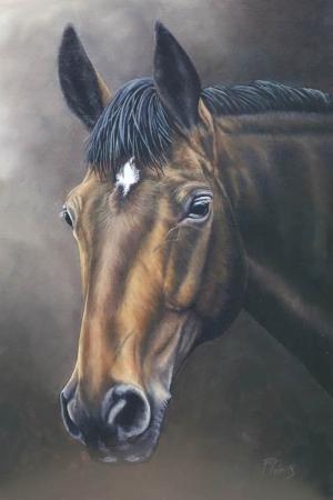 Atlar-66 Klasik Sanat Kanvas Tablo