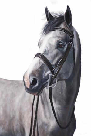Atlar-71 Klasik Sanat Kanvas Tablo