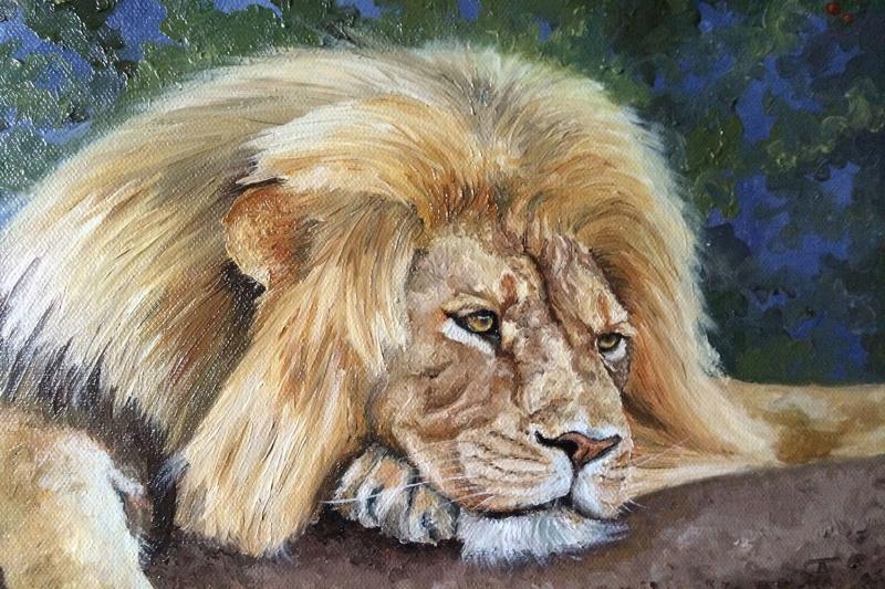 Avını Gözetleyen Aslan Yağlı Boya Sanat Canvas Tablo