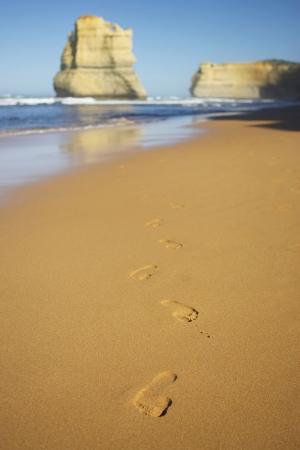 Avustralya Deniz Sahil 11 Doğa Manzaraları Kanvas Tablo
