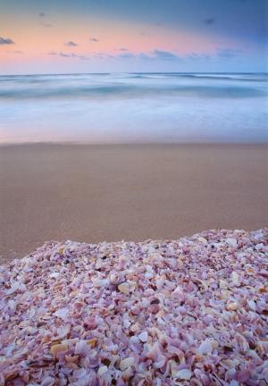 Avustralya Deniz Sahil 13 Doğa Manzaraları Kanvas Tablo