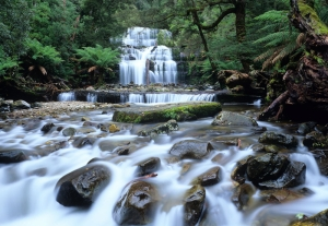 Avustralya Orman Şelale Nehir 6 Doğa Manzaraları Kanvas Tablo