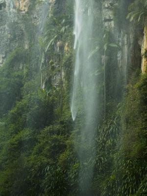 Avustralya Orman Şelale Nehir Doğa Manzaraları Kanvas Tablo