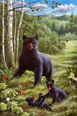 Ayı ve Yavruları-3 Hayvanlar Modern Sanat Kanvas Tablo