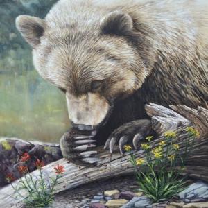 Ayılar Vahşi Hayvanlar-2, Ayı Temalı Kanvas Tablo