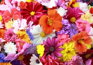 Bahçe Floral Sanat Kanvas Tablo