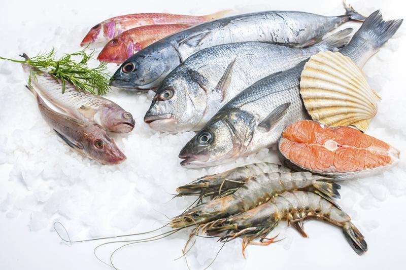 Balık Çeşitleri Lezzetler Kanvas Tablo