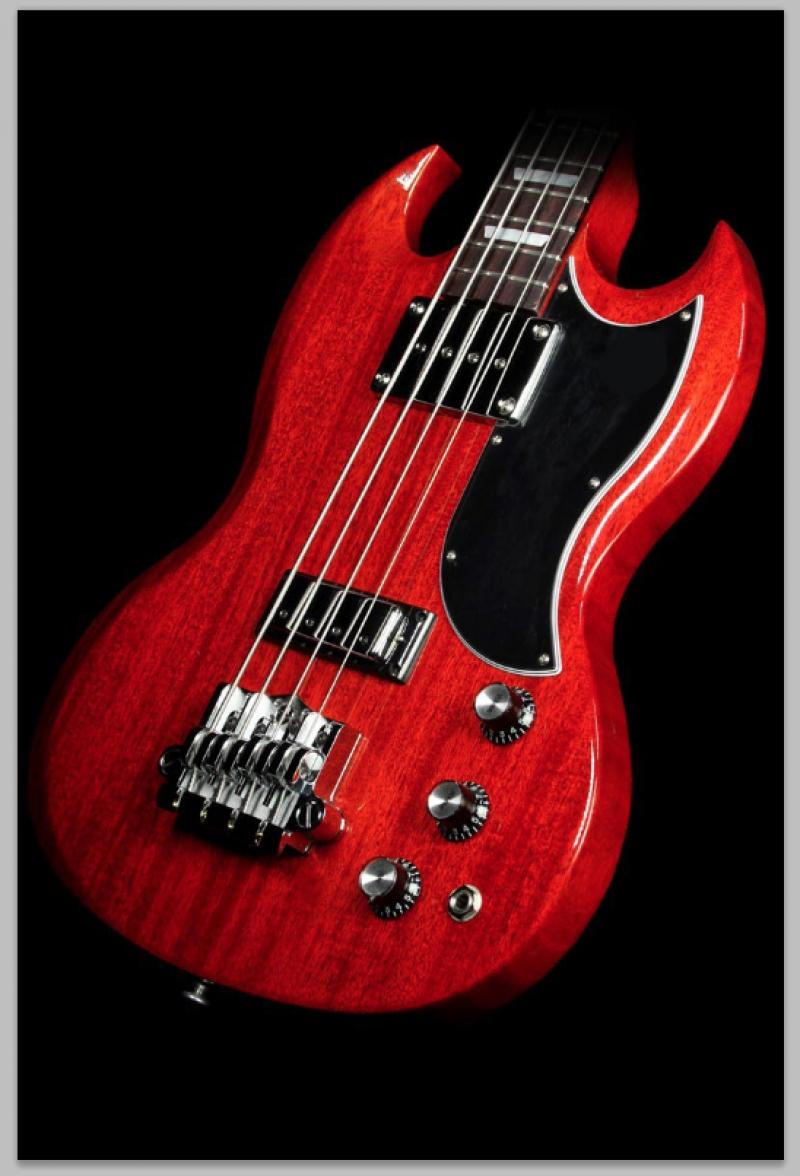 Bas Gitar Kanvas Tablo
