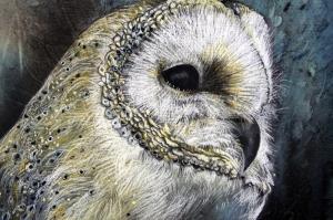 Baykuş 4 Hayvanlar Kanvas Tablo