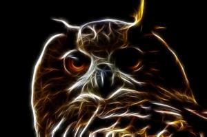Baykuş Dijital ve Fantastik Kanvas Tablo