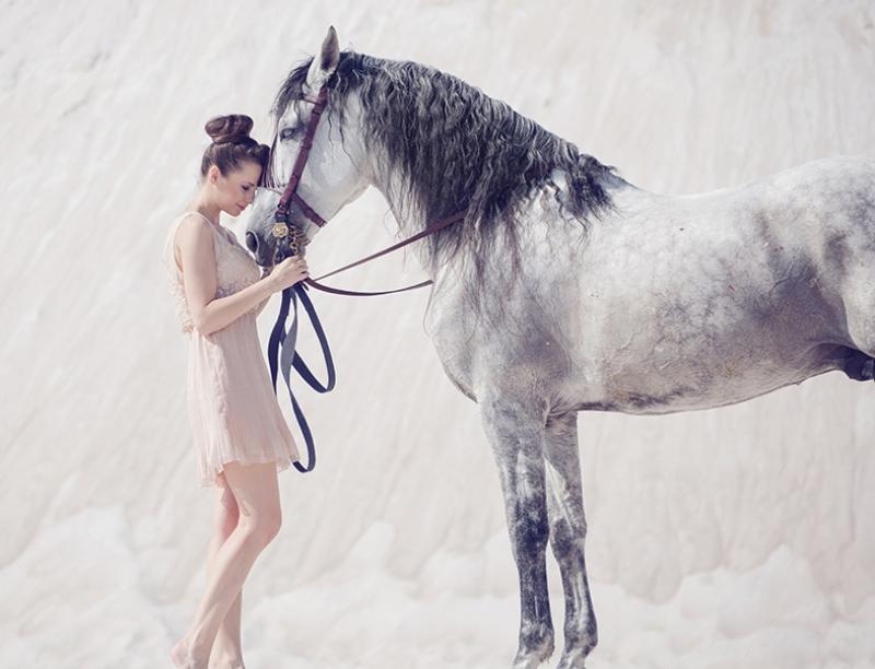 Beyaz At ve Esmer Güzel Hayvanlar Kanvas Tablo