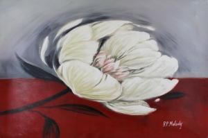 Beyaz Çiçekler 11 Yağlı Boya Sanat Kanvas Tablo