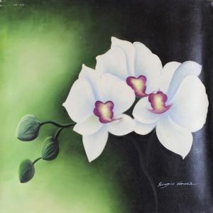 Beyaz Çiçekler 12 Orkide Yağlı Boya Sanat Kanvas Tablo
