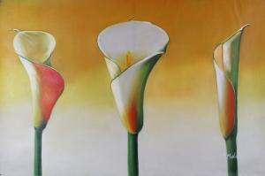 Beyaz Çiçekler 4 Afrika Zambağı Yağlı Boya Floral Sanat Kanvas Tablo