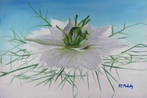 Beyaz Çiçekler 6 Yağlı Boya Sanat Kanvas Tablo