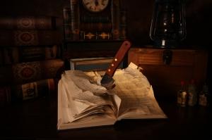 Bıçaklanmış Kitap Fotoğraf Kanvas Tablo