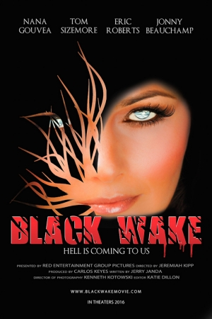Black Wake 2016 Sinema Kanvas Tablo
