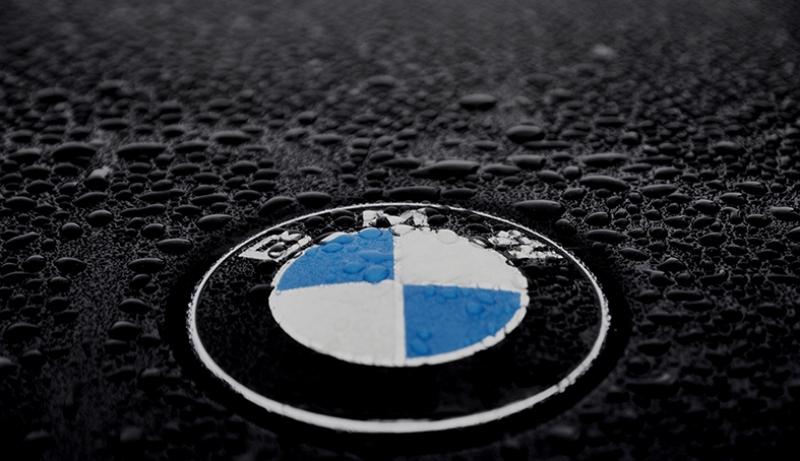 BMW Logo Kanvas Tablo