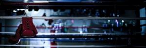 Boks Eldivenleri Ve Boks Ringi Spor Kanvas Tablo