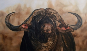 Bufalo, Boğa, Hayvan Temalı Kanvas Tablolar