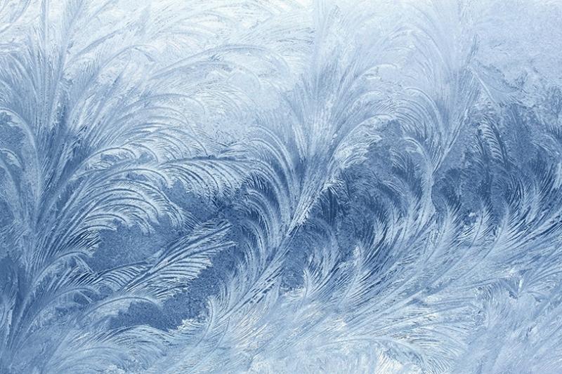 Buzdan Çiçekler Yağlı Boya Sanat Kanvas Tablo