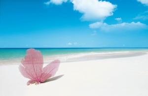 Cennet Plajı Cayo Largo Küba Doğa Manzaraları Kanvas Tablo