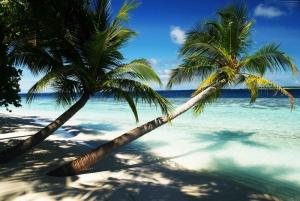 Cennet Sahili Maldivler Doğa Manzaraları Kanvas Tablo