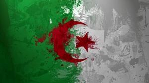 Cezayir Bayrak Kanvas Tablo