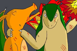 Charizard vs Typhlosion Pokemon Canvas Tablo Arttablo