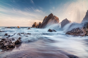 Corona Del Mar Kalifornia Usa Deniz Hırcın Dalgalar HD Doğa Manzaraları Kanvas Tablo