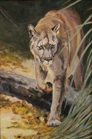 Dağ Aslanı-1 Hayvanlar Modern Sanat Kanvas Tablo