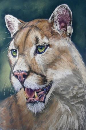 Dağ Aslanı Panter-1 Hayvanlar Klasik Sanat Kanvas Tablo