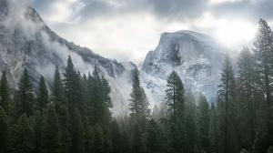 Dağ Ormanı Doğa Manzaraları Kanvas Tablo