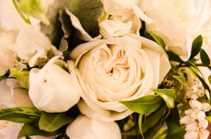 Dandelion Floral Sanat Kanvas Tablo