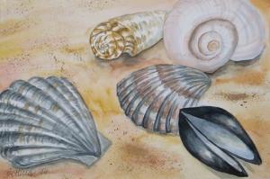 Deniz Kabukları Soyut Yağlı Boya Abstract Sanat Kanvas Tablo