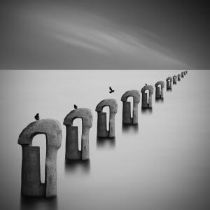 Deniz ve Kuşlar Siyah Beyaz Fotoğraf Kanvas Tablo