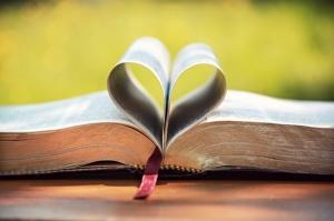 Doğa, Kitap, Kalp, Aşk & Sevgi Kanvas Tablo