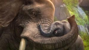 Fil ve Yavrusu Hayvanlar Kanvas Tablo