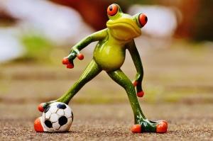 Futbolcu Kurbağa Fotoğraf Kanvas Tablo
