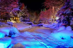 Gece Kar Manzarası Doğa Manzaraları Kanvas Tablo